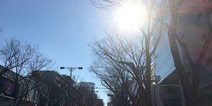rejob16_027_wakamatsu_top-min