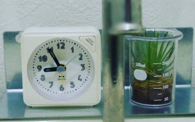 時計、小さいグリーン