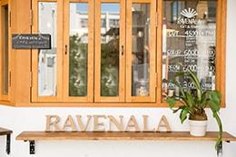 RAVENALA CUT & STAND