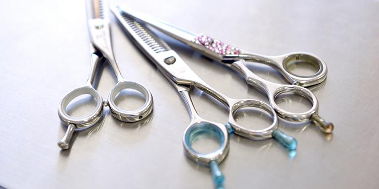 美容師の仕事は一生もの!そのやりがいやメリットに迫る