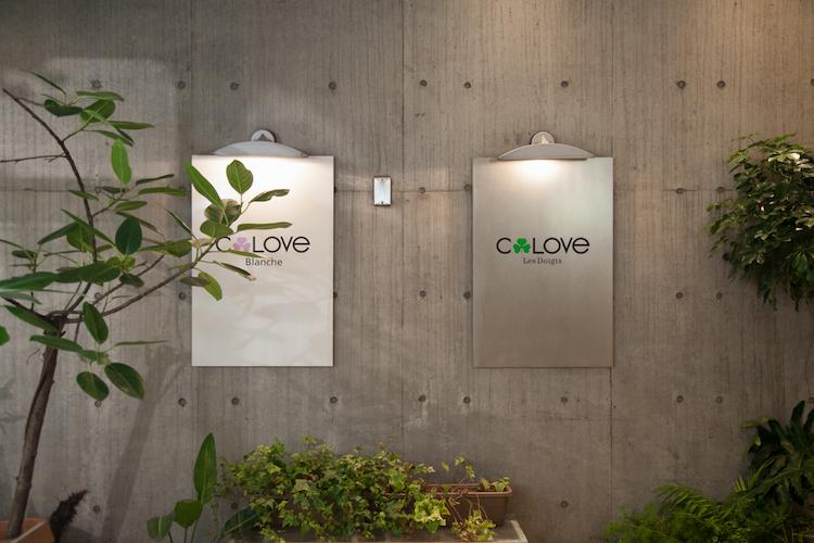 clove_top2